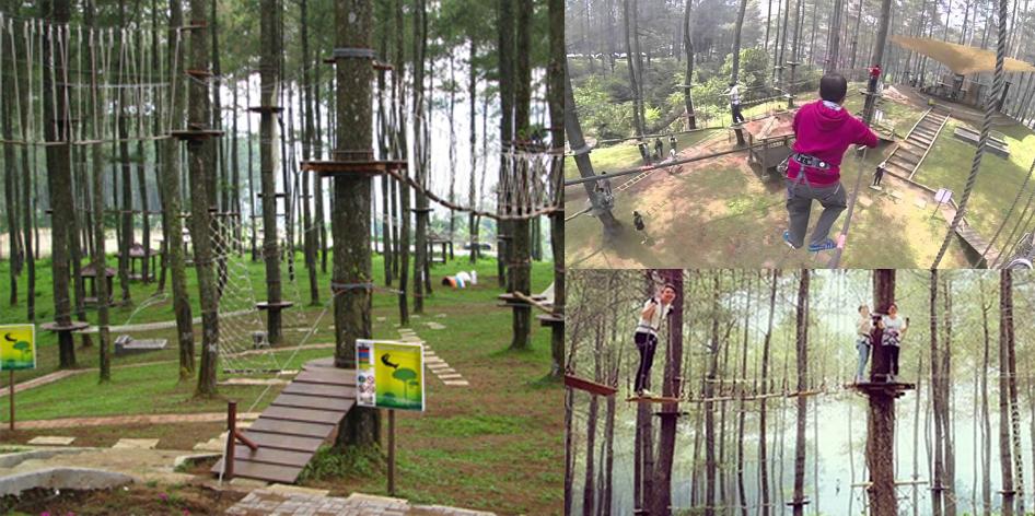 Treetop Adventure ParkBandung