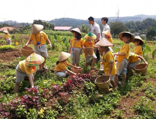 Garuda Farm Sentul – Wisata Edukasi Terpadu