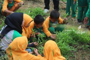 Agro Edukasi Paud Al-Izza